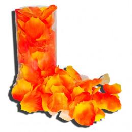 pétales de rose orange